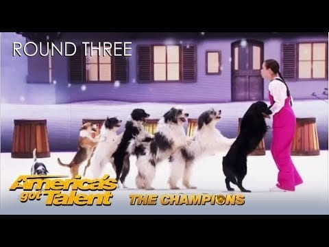 Coolest Dog Act On AGT Makes Heidi Klum Want To Yodel