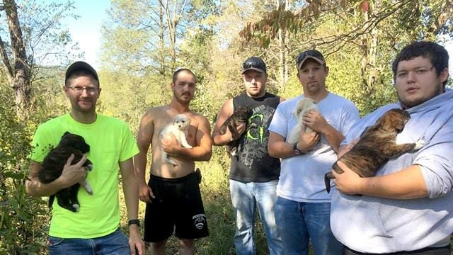 Bachelor Party Turns Into Dog Rescue Mission When Men Find Puppies In The Woods